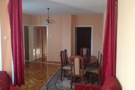 Comfortable flat in Bihac - Bihać - Lakás