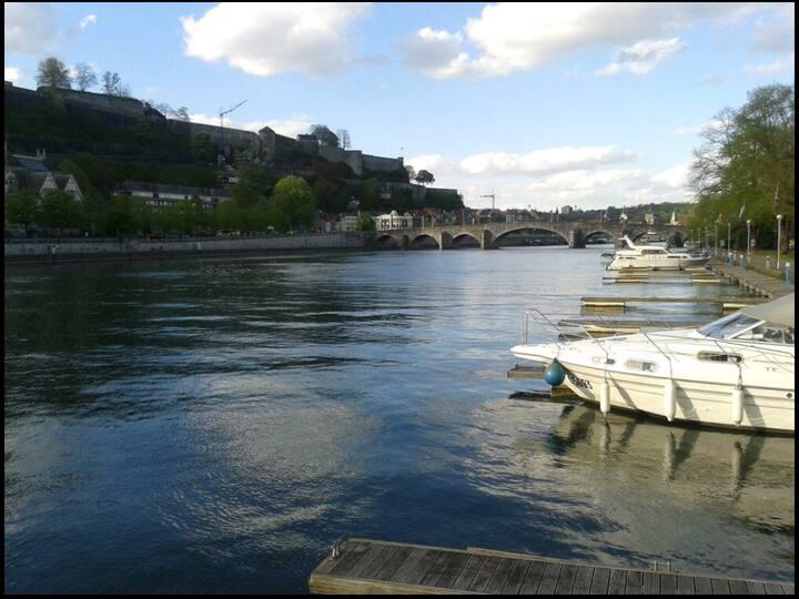 Grande chambre privative  nr1  bord de Meuse***
