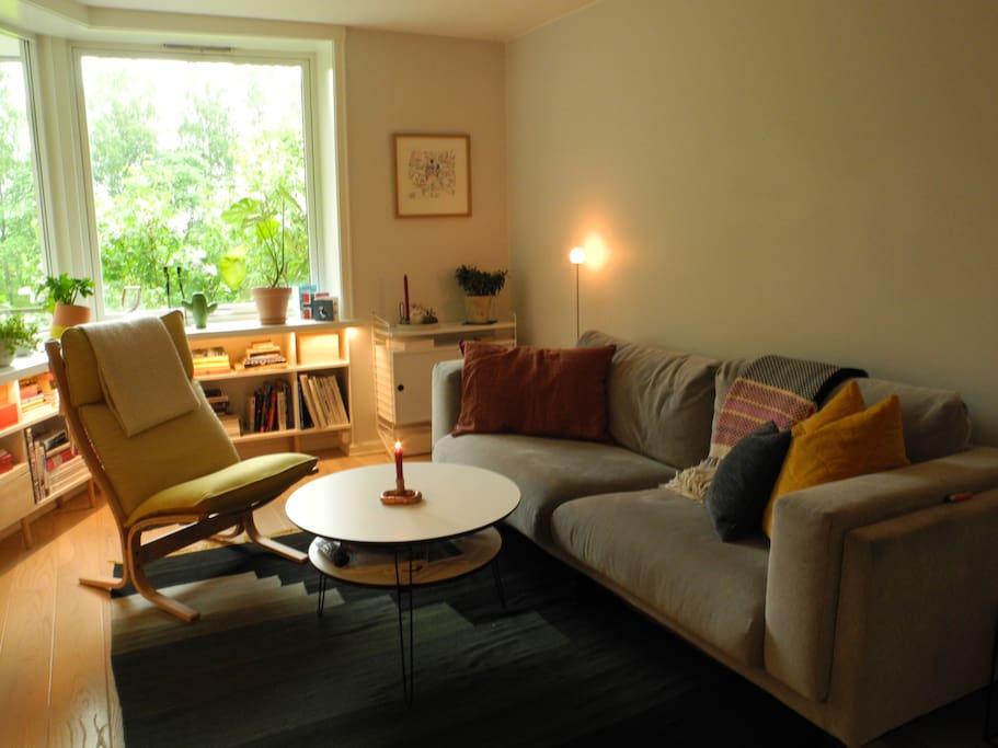 Living room - large sofa