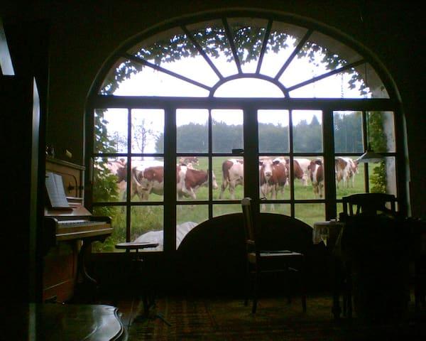 Bauernhaus, Ferme - Fougerolles - Hus