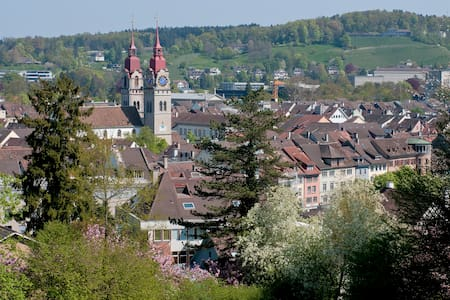 Stay in  Winterthur - near Zurich - Winterthur