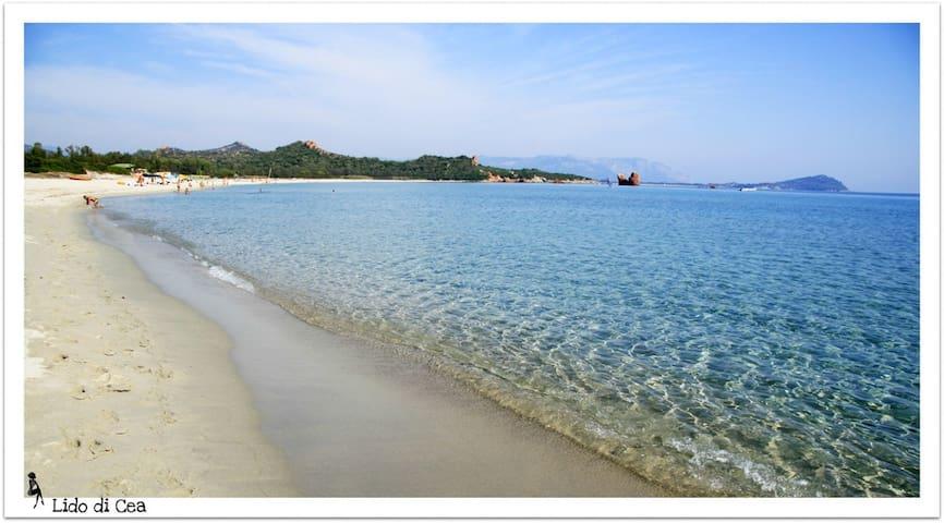 Sardegna soli 3 minuti dal mare 3p - Bari Sardo - Apartment