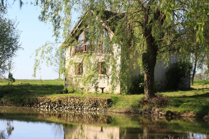 Maison XVIII°pleine nature - Cléré-du-Bois