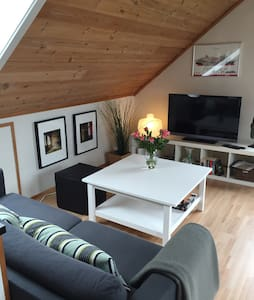 Private an uniqe loft apartement - House