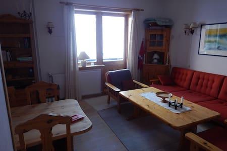 Fantastisk utsikt over Finsevann - Finse - Apartamento