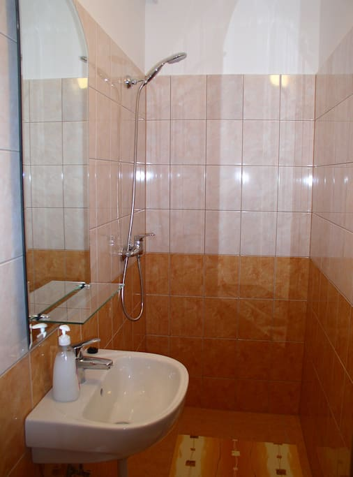 Shower with toilette