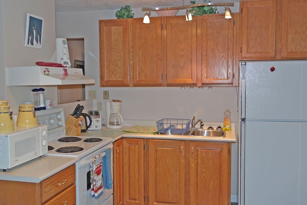 full kitchen size stove and fridge and microwave  fully equipped