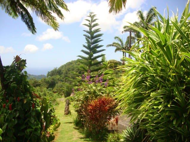 Symes Zee Villa, Dominica - Laudat - Villa