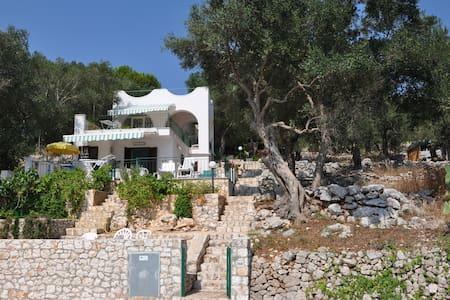 Sea view home for holidays - Marina di Andrano - Haus