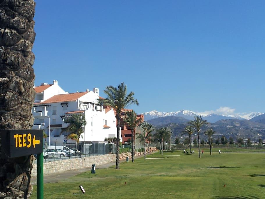 close to a Golf course