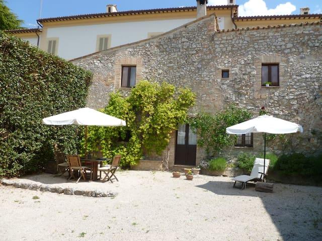 DellaGenga Resort Cacciarella 2-4 Px - Arezzola - Appartement
