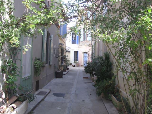 Belle maison entièrement rénovée - Arles - Huis