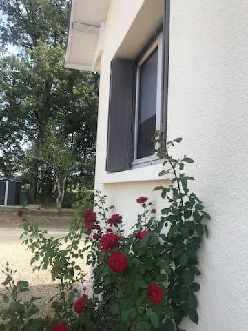 Maison verdoyante au coeur du Périgord