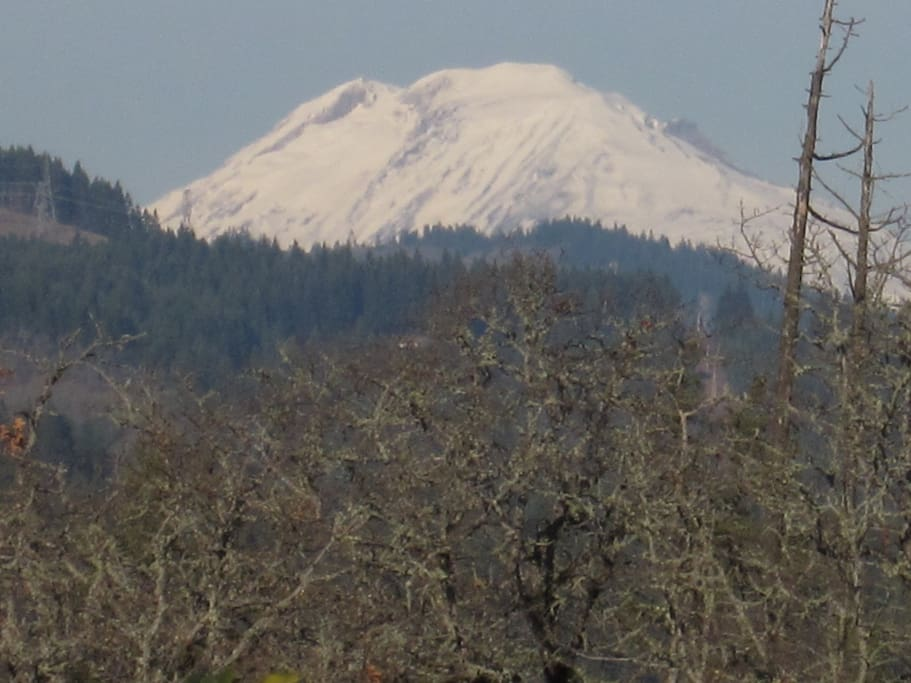 View of Mt Adams from the deck