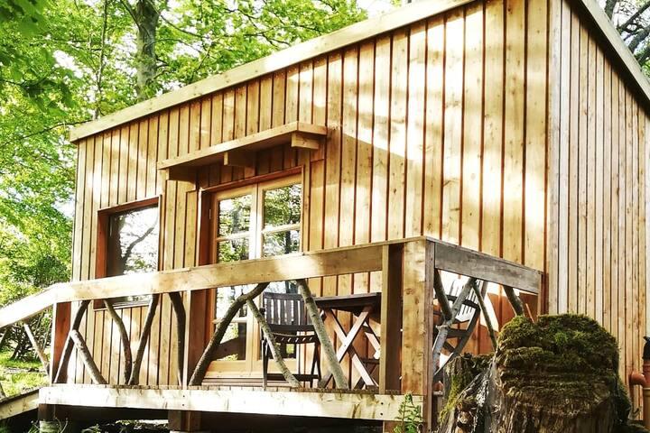 Woodland Eco Cabin on the Black Isle
