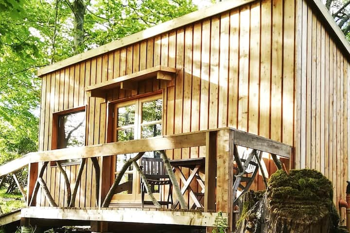 Woodland Eco Cabin on the Black Isle