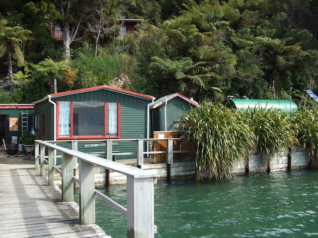 Shag Shack, holiday house - Havelock - Casa