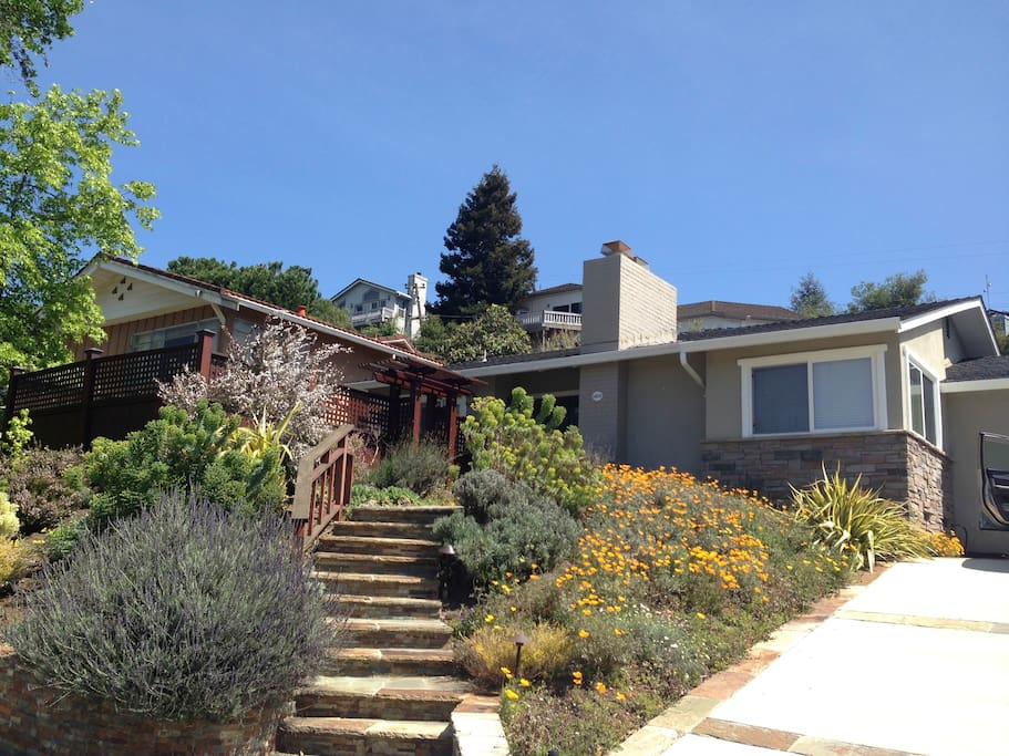 beautiful hillside home houses for rent in san jose