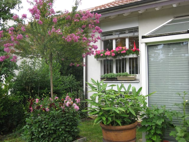 B&B one in Geneva City - Airport - Meyrin - Bed & Breakfast