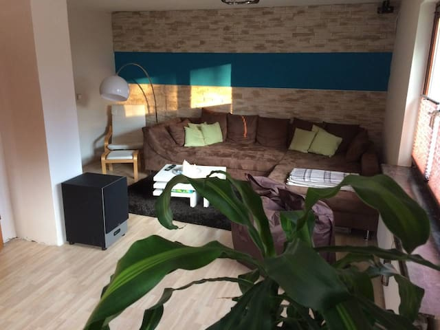 Private room in 2-family house,downtown 30min.walk