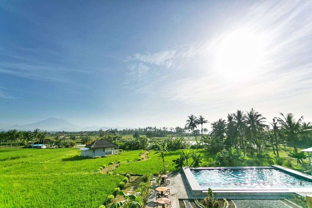 Your Bungalow in the middle of a rice field