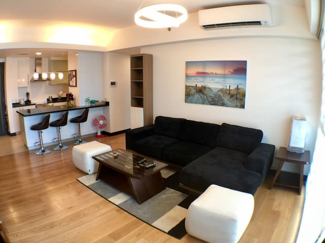 Modern One Bedroom Apartment in BGC - Taguig - Pis