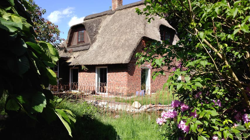 Untamed Wilderness in Hamburg 1850's country house