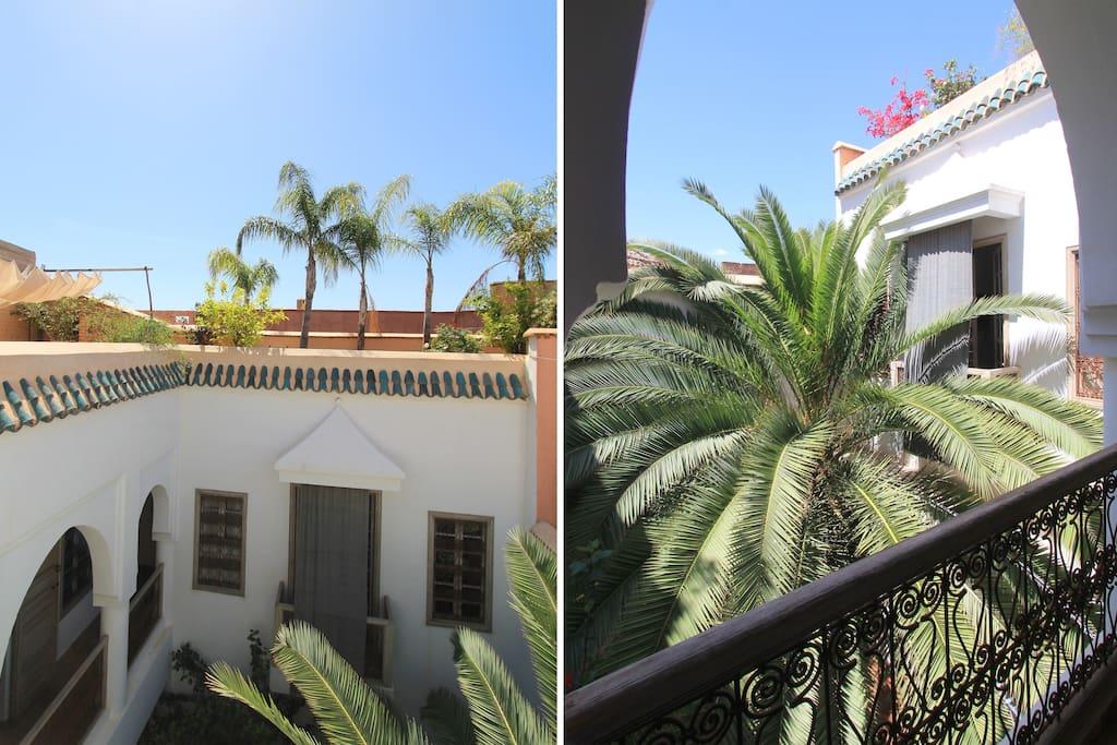 Italian silks on the balconies/ palmtrees