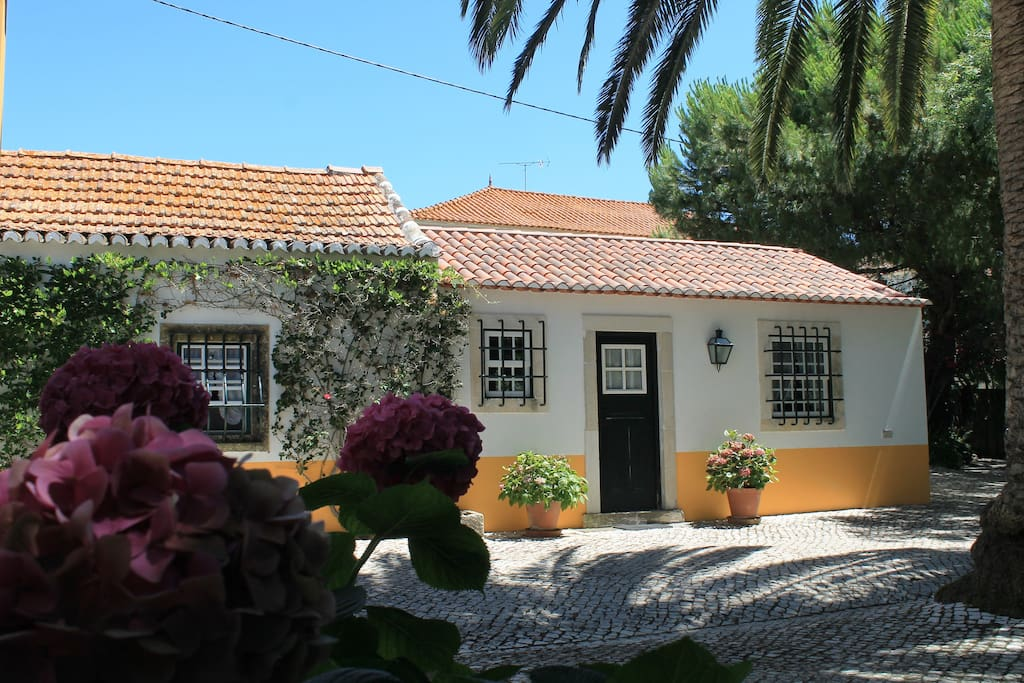 A nice and cosy cottage for your holidays!