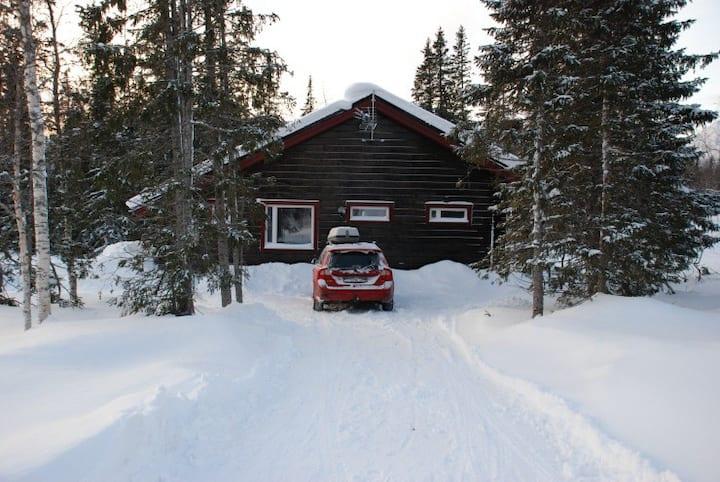 Mysig stuga i Kittelfjäll