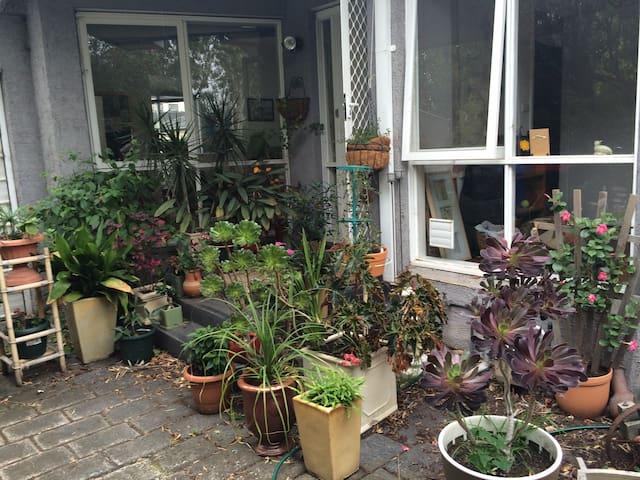 House is cosy and full of light  - Brighton East - Talo