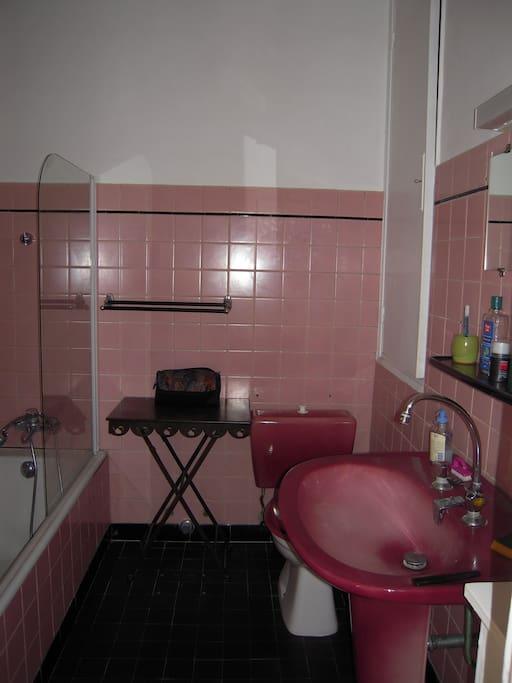 Salle de bain,wc,lavabo,machine a laver le linge.