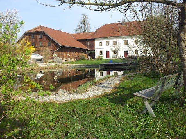 Wohnhaus mit Schwimmteich - Gaspoltshofen