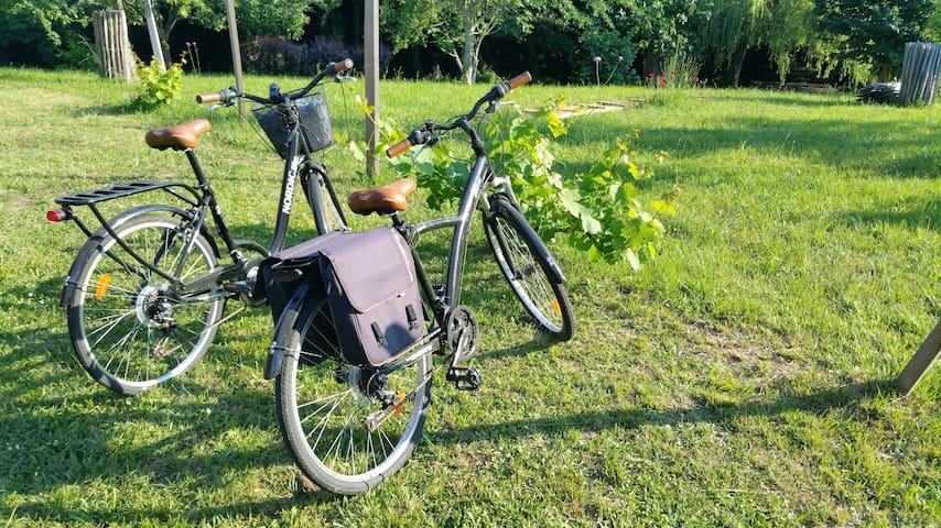 2 vélos adultes et 2 vélos enfants à disposition
