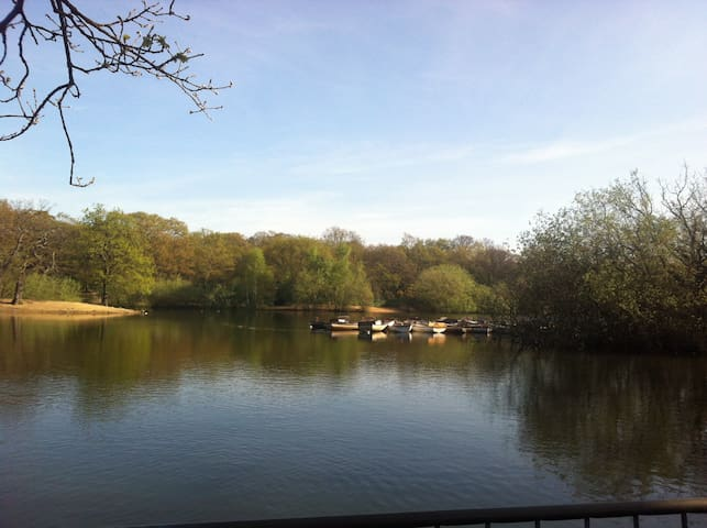 Hollow Ponds - Boating Lake - 8 mins from the house