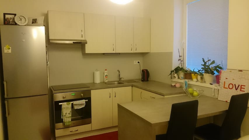 Nice apartment near the center of the City - Nitra - Apartment