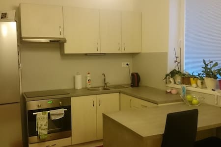 Nice apartment near the center of the City - Nitra - Daire