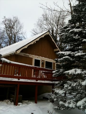 Poconos Cabin with Wood Fired Sauna - Gouldsboro - Cabin