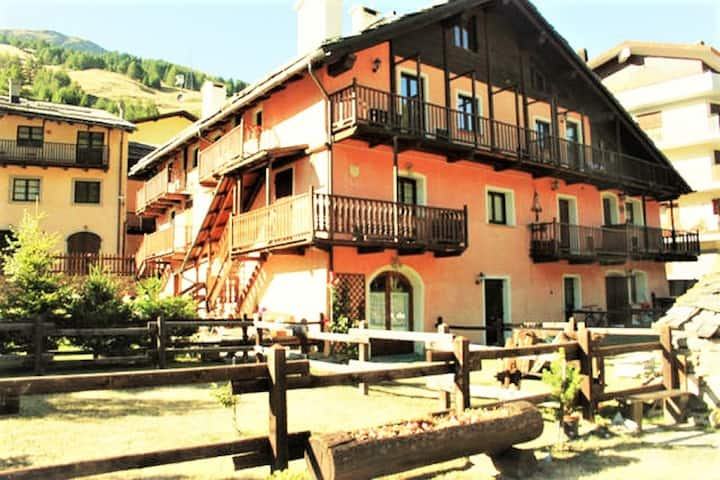Beautiful chalet with garden, skiing facilities