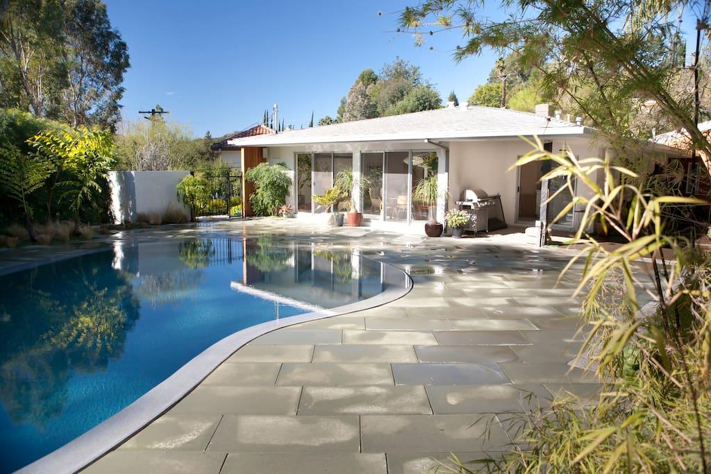 Laurel Cnyn Mid Century Modern Oasis