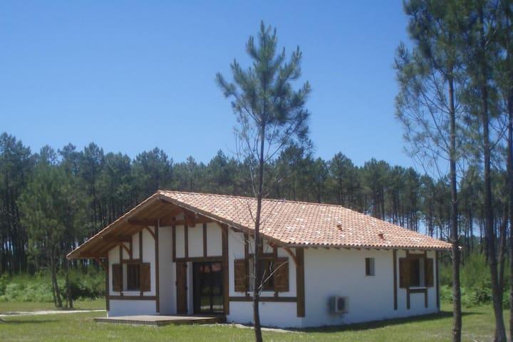 Maison Landaise 6-8 personnes proche de l'océan