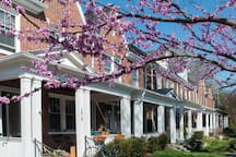 Spring Time! We love our neighborhood! Apt entrance is at the back of the house, downstairs