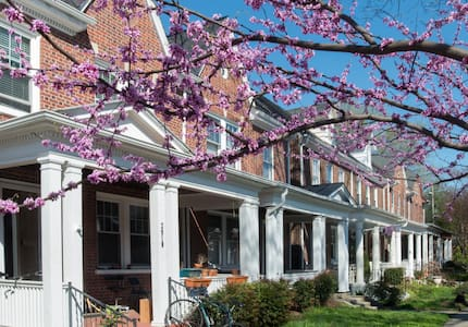 Hideaway Apt in Cool Carytown - Richmond - Huoneisto