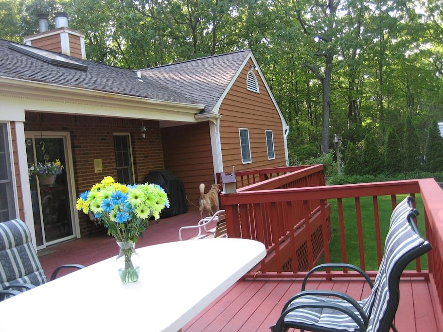 outside deck overlooking the woods