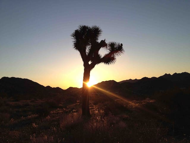 Sunrise hike. Read tons of info about the house and area in the Description section before requesting a booking.