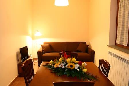 Nuova ed accogliente casa vacanze - Gambarie - Lejlighed