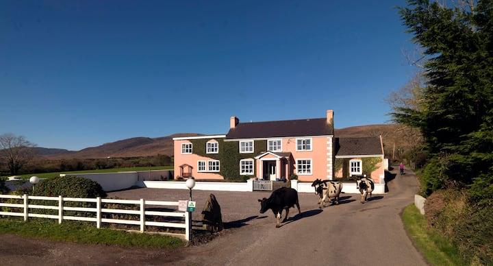 Murphy's farmhouse Bed & Breakfast