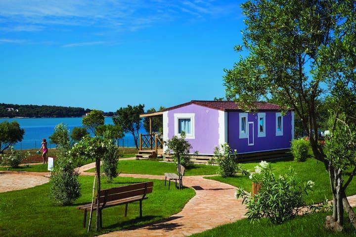 Aminess Sirena Premium Village - Novigrad - Hus
