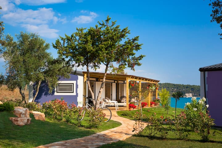 Aminess Sirena Bella Vista Homes - Novigrad - Casa