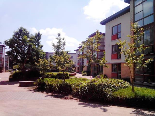Apartment 71 Room 4 Shanowen Square